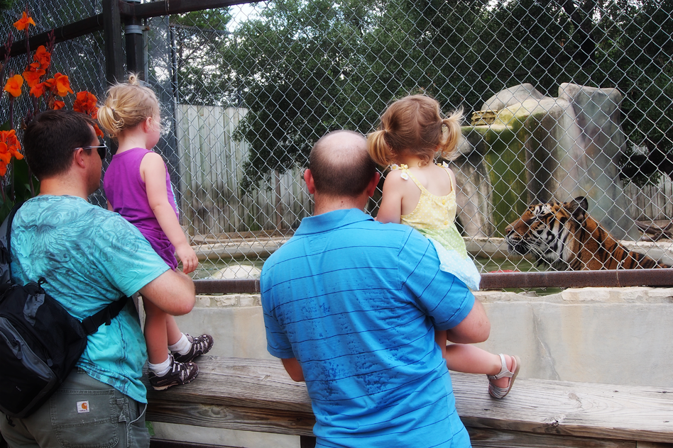 toddler activities in Austin, Texas, Austin Zoo